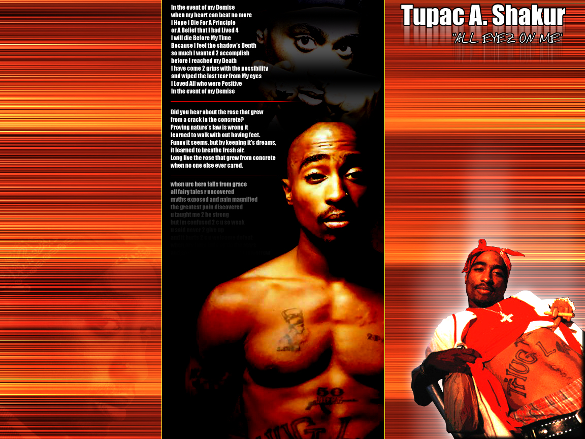 an analysis of the album strictly 4 my niggaz by tupac shakur Find a 2pac - strictly 4 my niggaz first pressing or reissue complete your 2pac collection shop vinyl and cds.